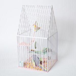 Bird Cage - Imprisoned!