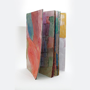 Colourfield Book, Northgate Hospital, Ariane Bankes Platinum Award for Watercolour and Gouache 2015
