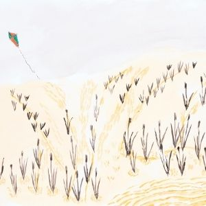 Kite Flying Behind the Dunes